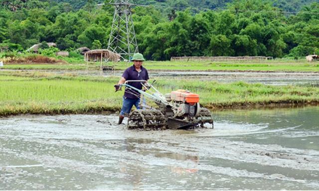Anh-bai-Tuyen-Quang-quan-tam-d-6184-2593