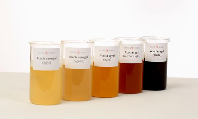 """<p class=""""Normal""""> Nước ép keo có màu sắc phụ thuộc vào các phẩm chất khác nhau, thu được sau khi lọc và sàng để loại bỏ các tạp chất như cát và cặn gỗ.</p><p class=""""Normal"""">Ảnh: Alland &amp; Robert</p>"""
