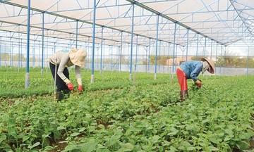 Yên Mỹ giải bài toán môi trường trong xây dựng huyện nông thôn mới