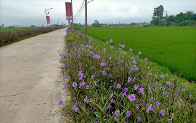 Truc-duong-chinh-vao-xa-Liem-P-1317-8479