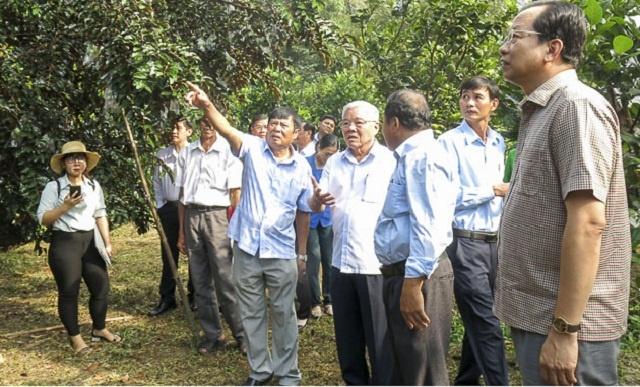 vu-sua-Soc-Trang-8436-1600145520.jpg