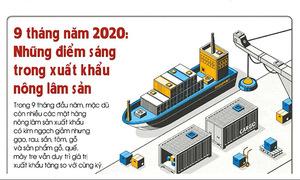9 tháng năm 2020: Những điểm sáng trong xuất khẩu nông lâm sản