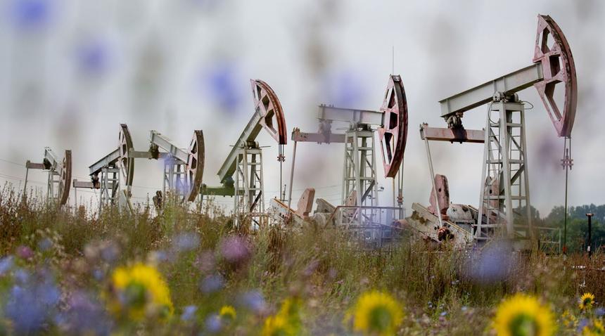 oil-1-37-2813-1603153978.jpg