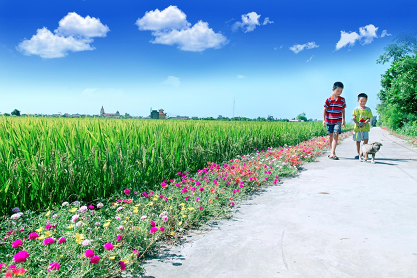 nong-thon-moi-xa-Xuan-Quang-4080-1605685