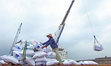 RCEP sẽ không làm trầm trọng hoá nhập siêu của Việt Nam