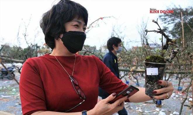 <p> <em>Những chậu lê bonsai cũng được nhiều khách yêu thích. Chị Thanh Mai (Hà Nội) cho biết chị mua những cành to trưng tại phòng khách, còn muốn mua mấy cành dăm, chậu bonsai đặt bàn làm việc.</em></p>