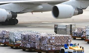 Hoạt động vận tải hàng hóa bằng đường hàng không đã phục hồi