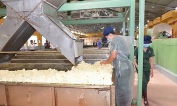 Thị trường Trung Quốc chiếm 75% thị phần xuất khẩu cao su