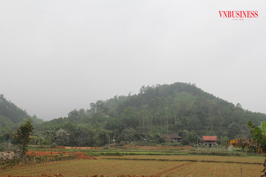 Chu-tich-UBND-xa-Binh-Long-huy-1576-6139