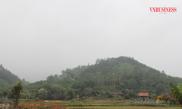 Bài 2: Giữ rừng nhờ hợp tác xã