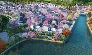 Liệu pháp tắm khoáng nóng kéo dài tuổi thọ chỉ có tại biệt thự khoáng nóng Sun Onsen Village - Limited Edition