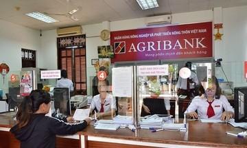 Sở hữu nhiều bất động sản khiến Agribank chậm được cổ phần hóa?