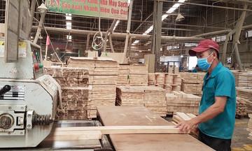 Xuất khẩu gỗ của Việt Nam chỉ chiếm gần 2% thị phần ở EU