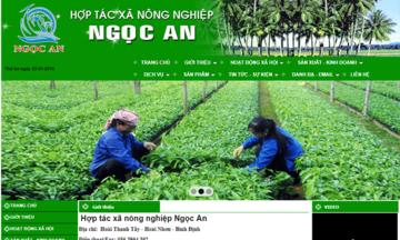 Xây dựng website và chuyện nâng tầm thương hiệu cho HTX