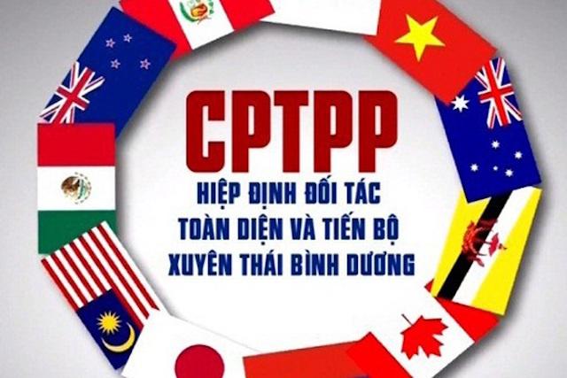 hIEP-DINH-cptpp-2264-1617763072.jpg