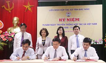 Bắc Ninh kỷ niệm 75 năm ngày Hợp tác xã Việt Nam