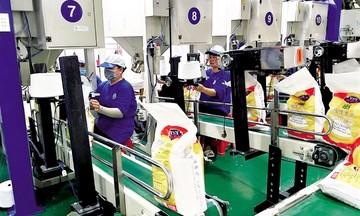 Một doanh nghiệp trúng thầu xuất khẩu hơn 11.000 tấn gạo giá cao sang Hàn Quốc