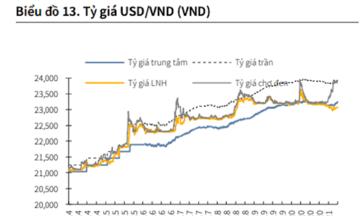 VND đối diện áp lực giảm giá trong nửa cuối năm