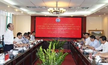 Đề xuất đưa Lai Châu trở thành tỉnh phát triển mạnh về KTTT, HTX