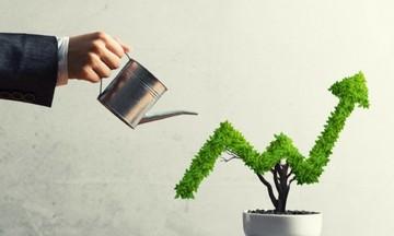 Trái phiếu xanh: Kênh huy động mới cho các dự án đầu tư dài hạn