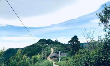Tà Xùa hồi sinh từ du lịch và bảo tồn cây chè cổ (Bài 1): Kho báu ở xã người Mông