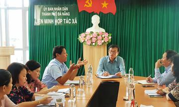 Ban hành Quy chế hỗ trợ thành viên Liên minh HTX TP Đà Nẵng giai đoạn 2021 - 2025