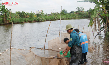 Kinh tế tập thể trong vùng đồng bào có đạo ở Ninh Bình (Bài 3): Đẩy mạnh phát triển nông nghiệp theo hướng đa canh
