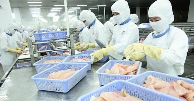 EU thay đổi cách kiểm soát thực phẩm hỗn hợp nhập khẩu, doanh nghiệp xuất khẩu cần lưu ý
