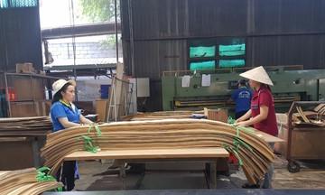Rủi ro nguyên liệu 'cản đường' xuất khẩu gỗ