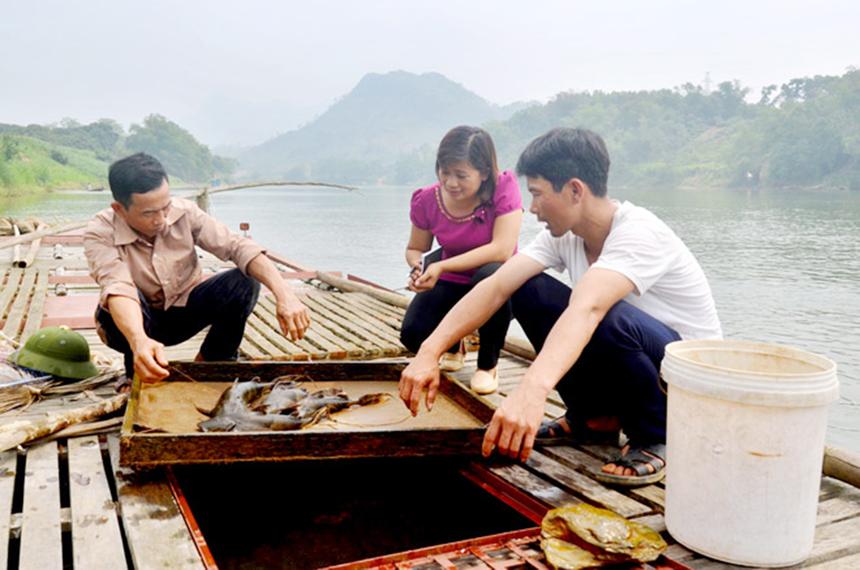HTX-Thai-Hoa-nuoi-con-dac-san-2850-3565-