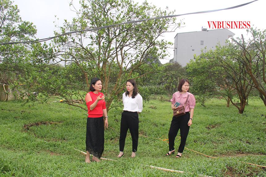 Chi-Vu-Thi-Le-Thuy-Giam-doc-HT-3543-7828