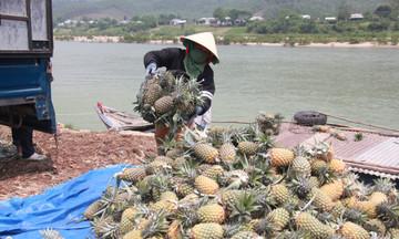 Xuất khẩu rau quả 4 tháng đạt 1,35 tỷ USD