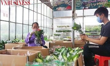 'Làng hoa trẻ' Xuân Quan: Xây dựng môi trường xanh để phát triển du lịch sinh thái