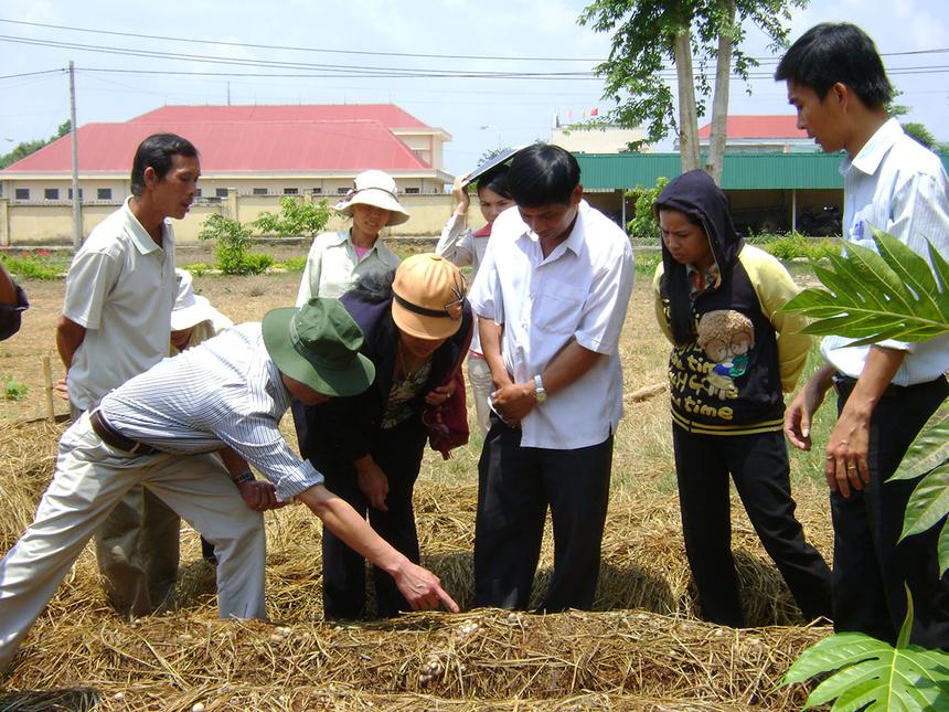 Kim-Thanh-nang-chat-nhan-luc-n-6220-8095