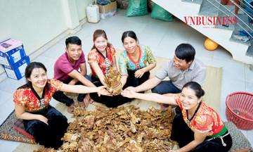 Phụ nữ dân tộc thiểu số tham gia chuỗi giá trị nông sản (Bài 2): Măng tre thúc đẩy kinh tế hợp tác