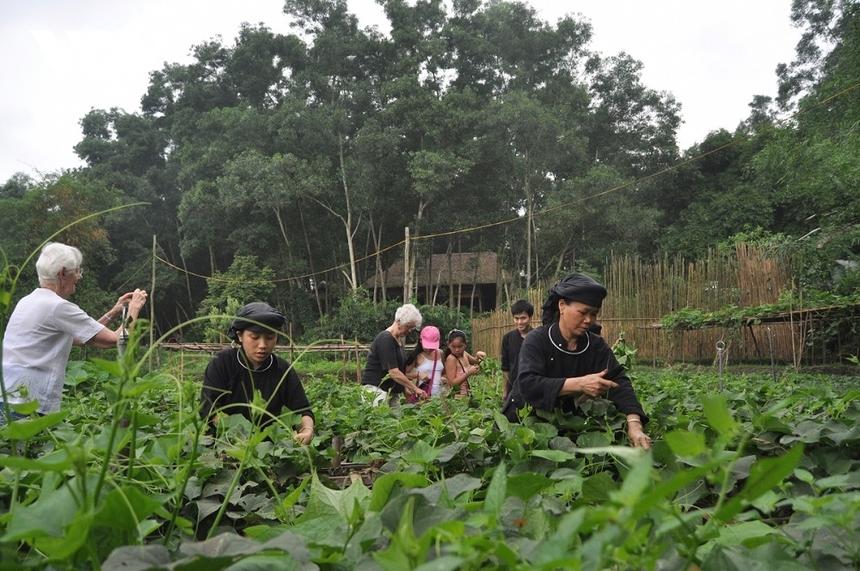 Phuong-Tien-4928-1622196144.jpg
