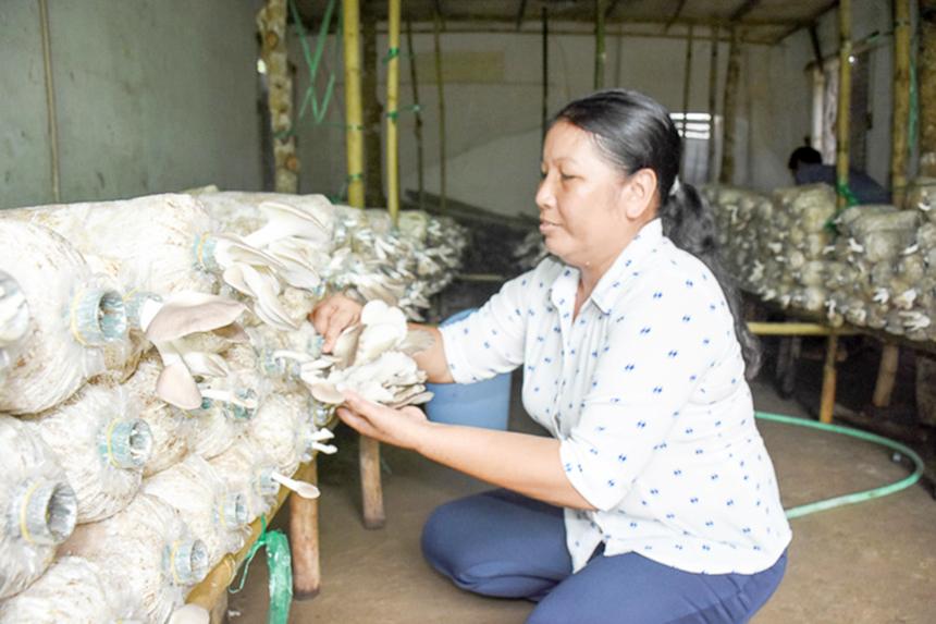 Tan-Hung-phat-trien-nong-nghie-9819-3930