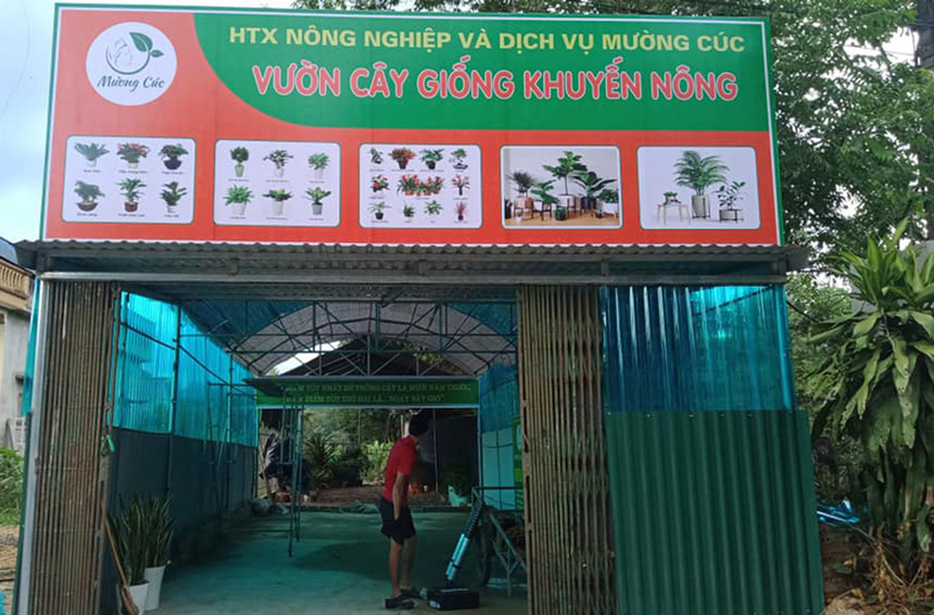 Vuon-cay-giong-khuyen-nong-cua-4190-2184