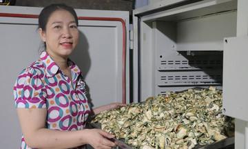 HTX Tơ Tung chuyển mình trên nền tảng công nghệ