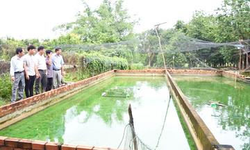 Tân Thành: Đào tạo nghề giúp nghề chăn nuôi thành công