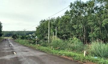 Đổi thay cuộc sống người Châu Mạ ở Tà Lài (Bài 3): Cùng nhau xây dựng nông thôn mới