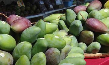 Hệ thống Liên minh HTX Việt Nam đẩy mạnh kết nối, tiêu thụ nông sản