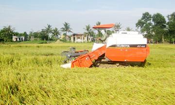 HTX công nghệ và những mùa vàng trên đất cát Phú Vang