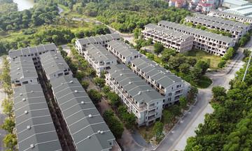 Hưng Yên: Tìm nhà đầu tư cho dự án vườn Vạn Tuế - Sago Palm Garden sau sai phạm