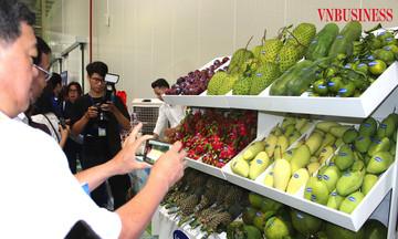 Nâng vị thế rau quả Việt trên thị trường cao cấp