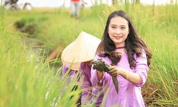 HTX Hiếu Thuận: Đồng lòng phát triển lúa hữu cơ