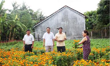 Khởi sắc nông thôn mới Phú Hòa (Bài 1): Hiệu quả từ công tác giảm nghèo