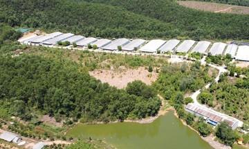 Chăn nuôi khép kín hóa giải ô nhiễm môi trường