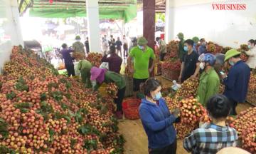 Liên minh HTX tỉnh Bắc Giang khẳng định vai trò kết nối tiêu thụ nông sản