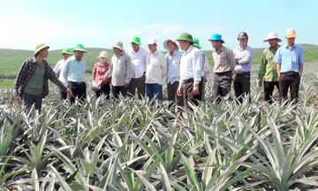 Đào tạo nghề góp phần đổi mới diện mạo nông thôn Triệu Tài